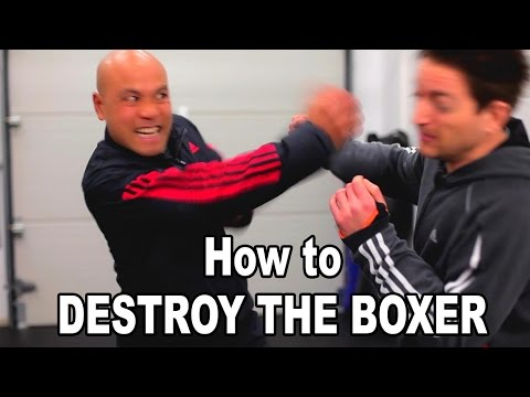 wing chun techniques - how to destroy the boxer continued Q36 - B Image 1