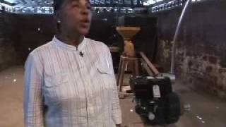 Qip Minustah Moulen Nan Kabar Haiti