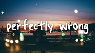 shawn mendes - perfectly wrong // lyrics