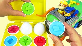 Best Learning Colors Paw Patrol Shapes in Eggs Carton Garbage Truck Numbers Baby Preschool Children