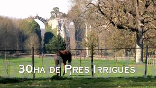Le Haras de la Folie - Ecurie de propriétaire, pension de chevaux