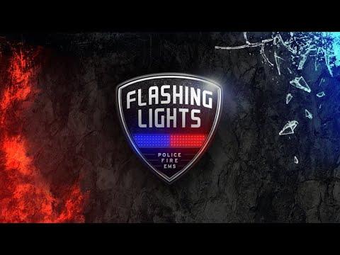 Flashing Lights 🚔 02: Recht und Ordnung mit Sunyo (Fahrzeugsimulation)