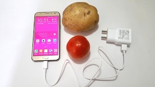 charge my phone with a fruit or vegetable?