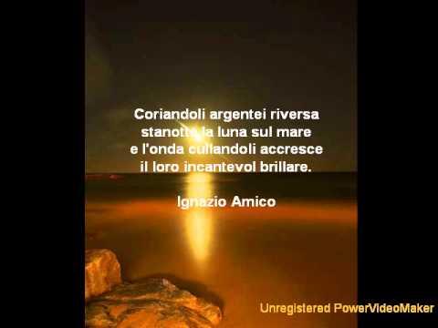 Poesie al chiaro di luna youtube - Il giardino al chiaro di luna ...