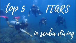 5 Common Fears in Scuba Diving | Tips for New Divers