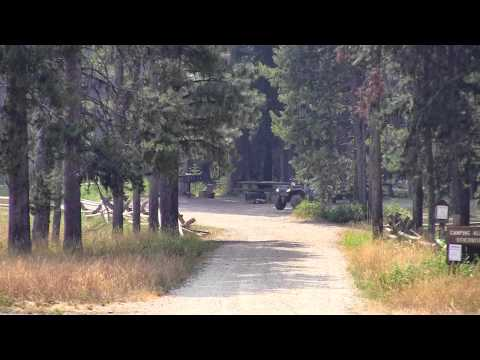 Fales Flat Campground Video