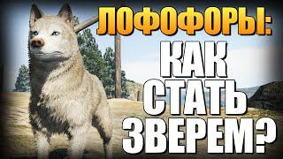 GTA 5 - Как Играть за Животных? (Лофофоры) #6