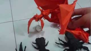Origami Folded In 2012 By Origamiaddict95 Including Ho Oh Created By Me :d