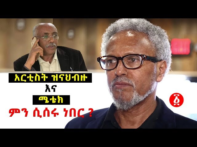 Ethiopia: Artist Zinabizu Talks About METEC