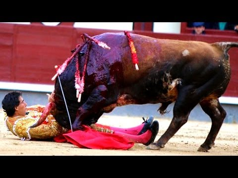 Matadors Gruesomely Injured At Bullfight (nsfw Photos, Video) video