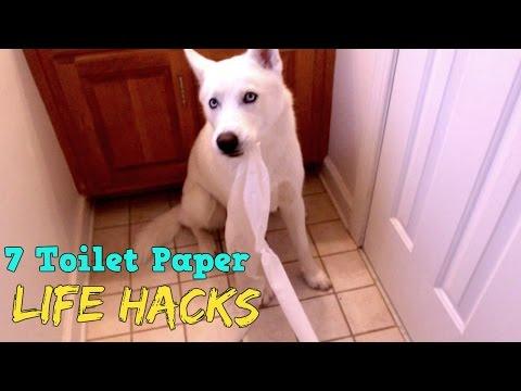 7 Toilet Paper Life Hacks