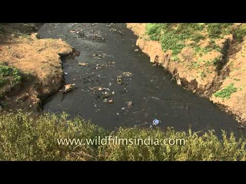 Sewage water pollution channel to holy Ganges river in Varanasi