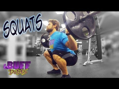 How to Perform the Squat - Proper Squats Form & Technique Image 1