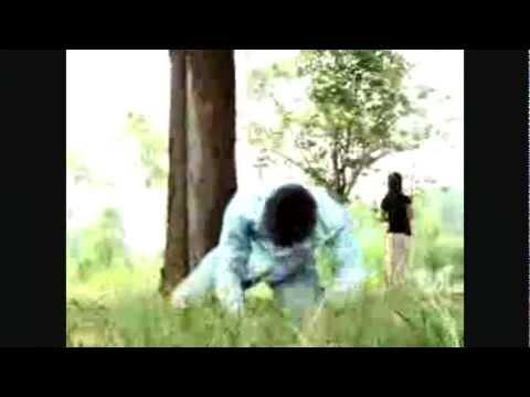 Bao Lee  -  Hlub Tsis Tau video