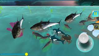 Underwater Sea Animals Kingdom Battle Simulator - Tap Dragon Games