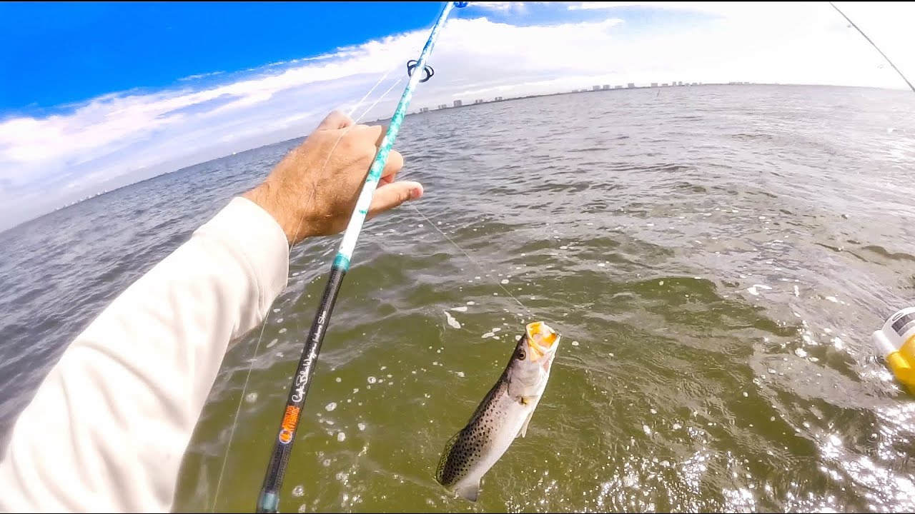 Jensen beach wading fishing in the flats hd video 74 for Jensen beach fishing report