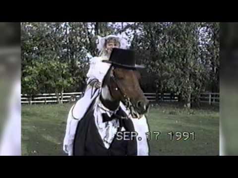 馬がタキシードを着て花嫁を載せているように見える♪