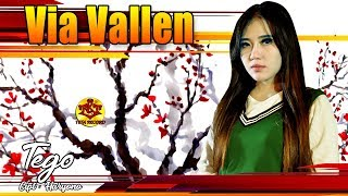 download lagu Via Vallen-tego gratis