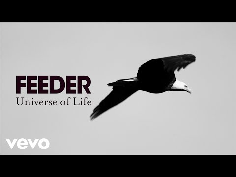 Feeder - Universe of Life