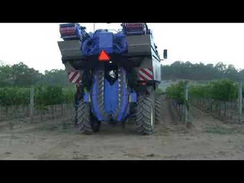 Walsh Vineyard Management: Machine Harvest 2008
