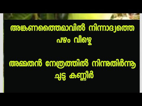 Mampazham Kavitha With Malayalam Lyrics video