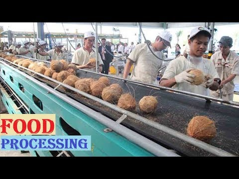 Amazing Food Processing Machines COCONUT & CHOCOLATE Factory ★ Fast Workers Food Machine Inventions