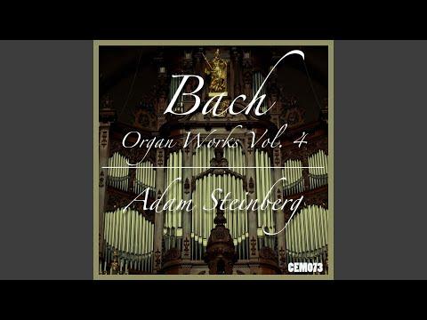 Prelude and Fugue in F Minor, BWV 534: I. Prelude