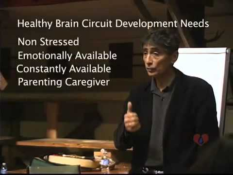 0 Brain Development Addiction with Gabor Maté