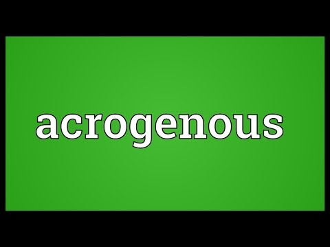 Header of acrogenous