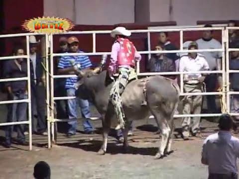 Destructores En La Expo Feria de Zitacuaro Mich. ¡¡Rey de Oros Casi Mata al Jinete!!