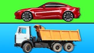 Çocuklar İçin Arabalar Kamyonlar | Kara Taşıtlarını Öğreniyoruz | Gerçek Araç Sesleri