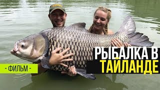 Карпфишинг в Таиланде с Carptoday. Gillhams Fishing Resort. Фильм
