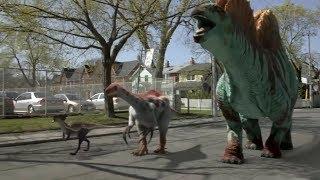 Dino Dan Trek's Adventures Herbivores Vs Carnivores