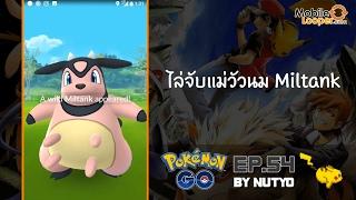 Pokemon Go!! EP.54 ไล่จับแม่วัวนม Miltank พร้อมแนะนำเว็บเช็คข้อมูลโปเกมอนสุดเจ๋ง