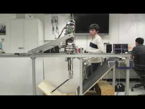 Hume Biped Robot Performing Balance on Split Terrain and Undirected Walking