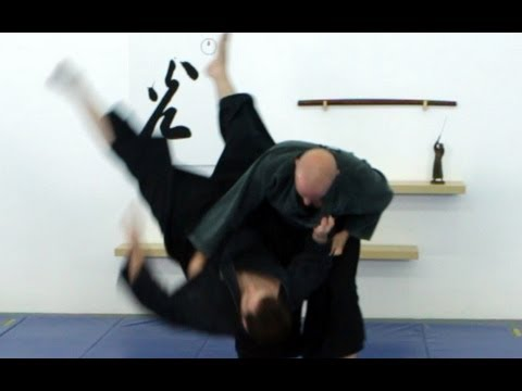 Joint locks, Ninjutsu, all the basic Ninja armlocks techniques - Interactive video for AKBAN wiki Image 1