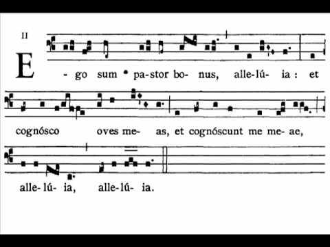 Gregorian Chant - Ego sum pastor bonus