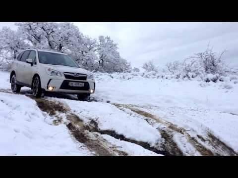Тест драйв Off road Subaru Forester 2013-2014