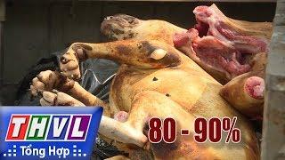 THVL | Ăn thịt chó, những hệ lụy khôn lường