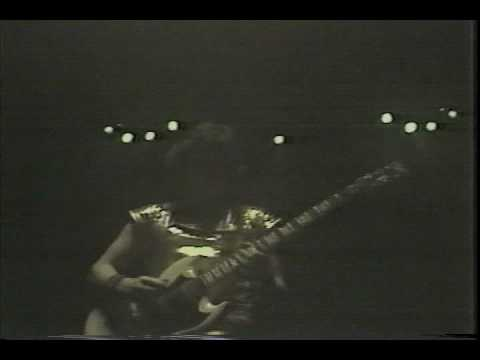 Blue Oyster Cult Live 1981: Born To Be Wild