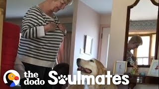 This Golden Retriever Insists on Visiting His Favorite Neighbor Every Day | The Dodo Soulmates
