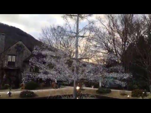クリスタルラブツリーの動画
