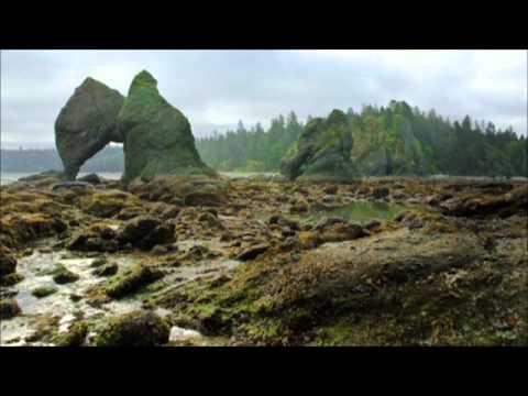 Devin Townsend Project - Kawaii