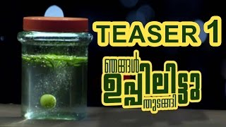 Nellikka Malayalam Teaser 1 -  Atul Kulkarni, Sija Rose,Deepak Parambol