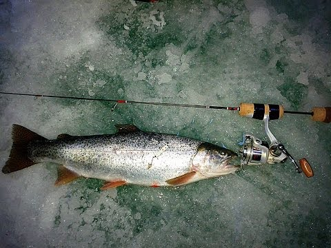 Ice fishing videos for 11 mile reservoir fishing report