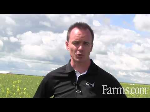 Grow Total Acre Program:  Practical Field Agronomic Information For Farmers