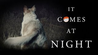 IT COMES AT NIGHT CRITIQUE #C