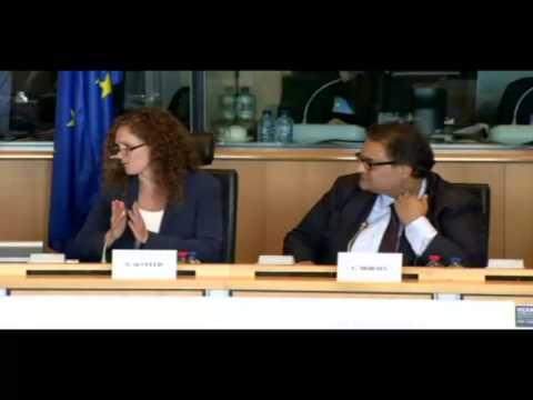 Annie Machon speech for EU Parlaiment LIBE hearing on NSA spying scandal