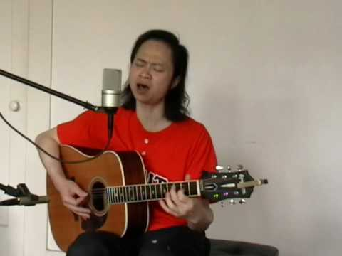 Acoustic Guitar - Magnetic Fields cover