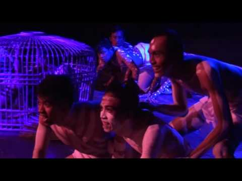 Teater Qi : Ada Tokek
